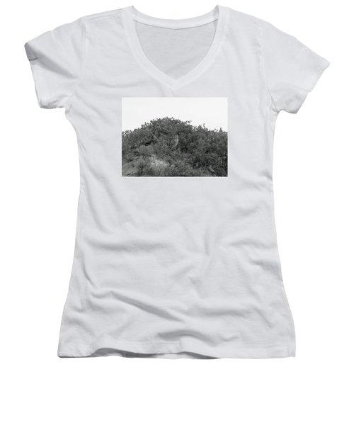 Lesser Horned Owl Women's V-Neck T-Shirt (Junior Cut) by Sandy Taylor