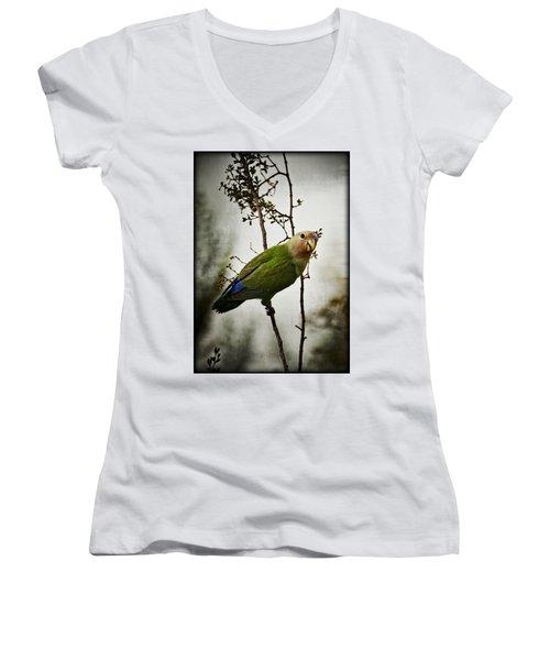 Lovebird  Women's V-Neck T-Shirt (Junior Cut) by Saija  Lehtonen