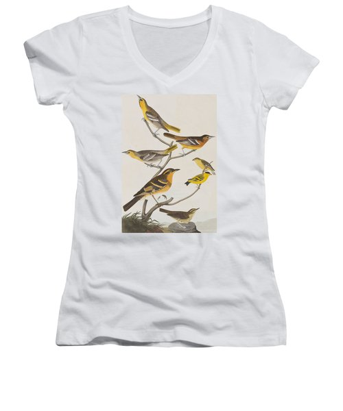 Orioles Thrushes And Goldfinches Women's V-Neck T-Shirt (Junior Cut) by John James Audubon