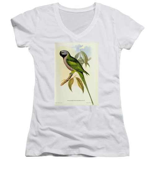 Parakeet Women's V-Neck T-Shirt (Junior Cut) by John Gould