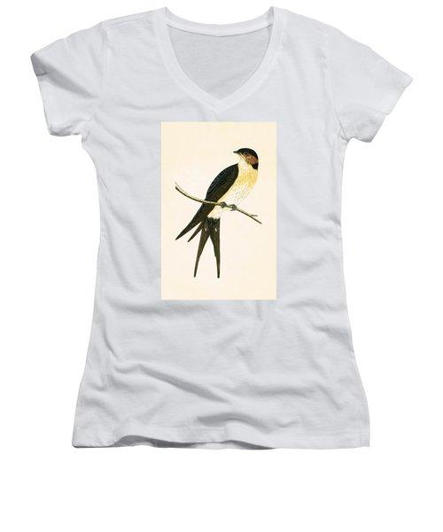 Rufous Swallow Women's V-Neck T-Shirt (Junior Cut) by English School