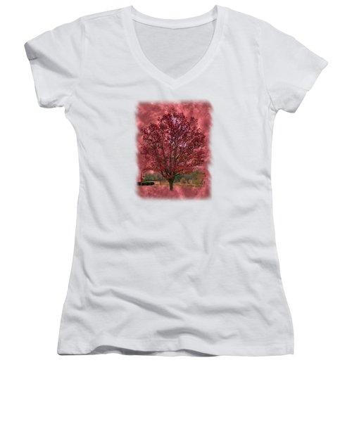 Seeing Red 2 Women's V-Neck T-Shirt (Junior Cut) by John M Bailey