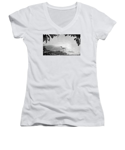 Snowy Egret Women's V-Neck T-Shirt (Junior Cut) by Sandy Taylor