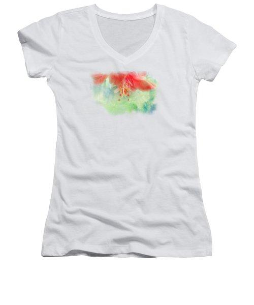 Softly Colored 1 Women's V-Neck T-Shirt (Junior Cut) by Judy Hall-Folde