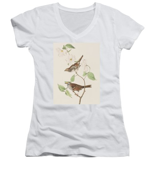 White Throated Sparrow Women's V-Neck T-Shirt (Junior Cut) by John James Audubon