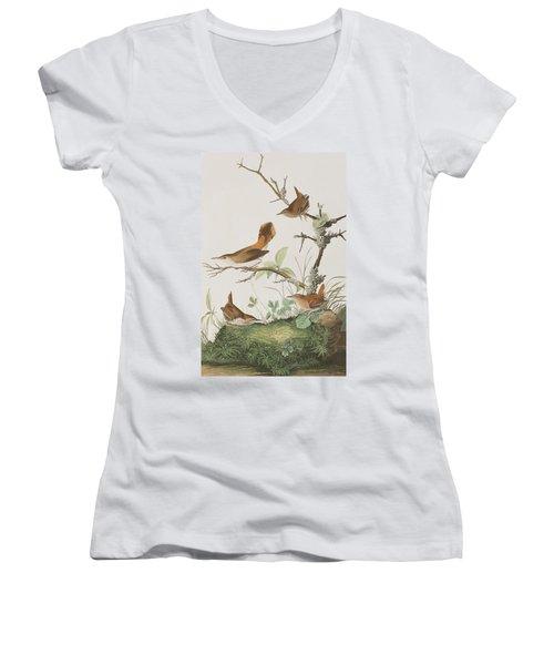 Winter Wren Or Rock Wren Women's V-Neck T-Shirt (Junior Cut) by John James Audubon