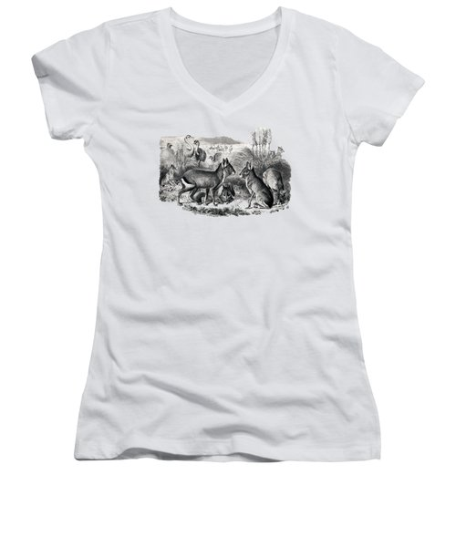woodcut drawing of South American Maras Women's V-Neck T-Shirt (Junior Cut) by The one eyed Raven