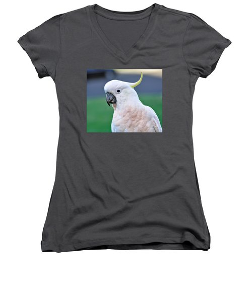 Australian Birds - Cockatoo Women's V-Neck T-Shirt (Junior Cut) by Kaye Menner