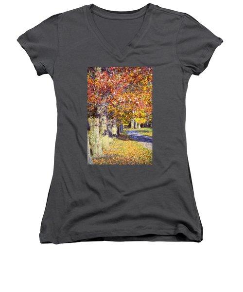 Autumn In Hyde Park Women's V-Neck T-Shirt (Junior Cut) by Joan Carroll