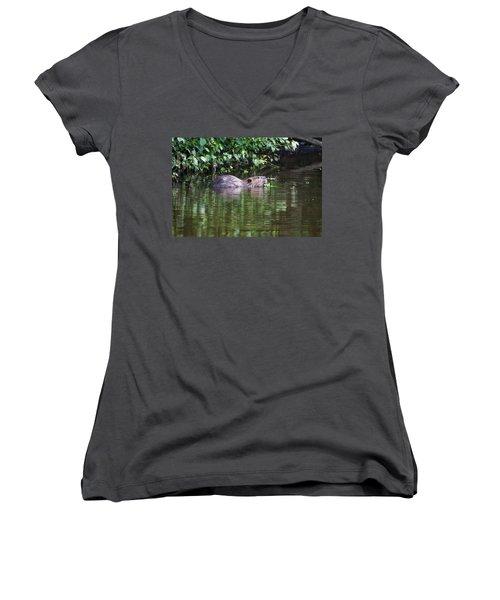 beaver swims in NC lake Women's V-Neck T-Shirt (Junior Cut) by Chris Flees