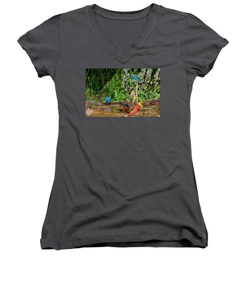 Birds Bathing Women's V-Neck T-Shirt (Junior Cut) by Anthony Mercieca