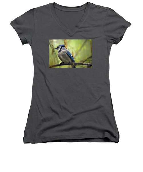 Blue Jay On A Misty Spring Day Women's V-Neck T-Shirt (Junior Cut) by Lois Bryan