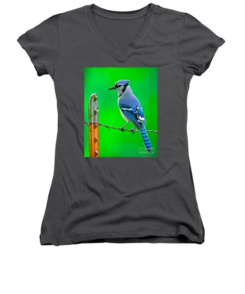 Blue Jay On The Fence Women's V-Neck T-Shirt (Junior Cut) by Robert Frederick