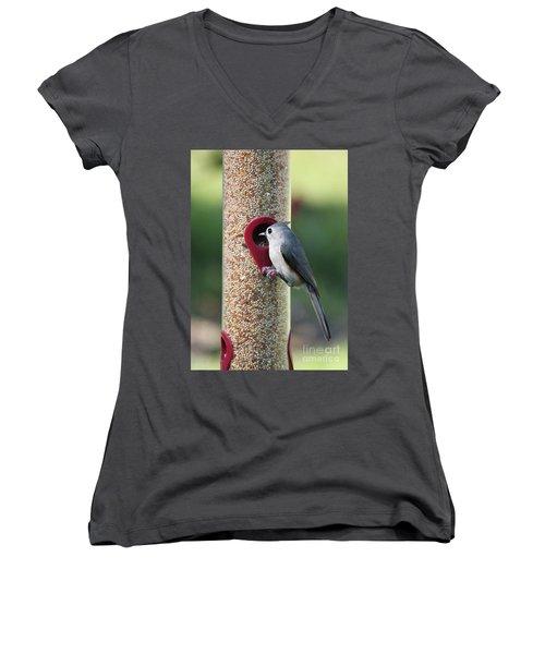 Eastern Tufted Titmouse  Women's V-Neck T-Shirt (Junior Cut) by Carol Groenen