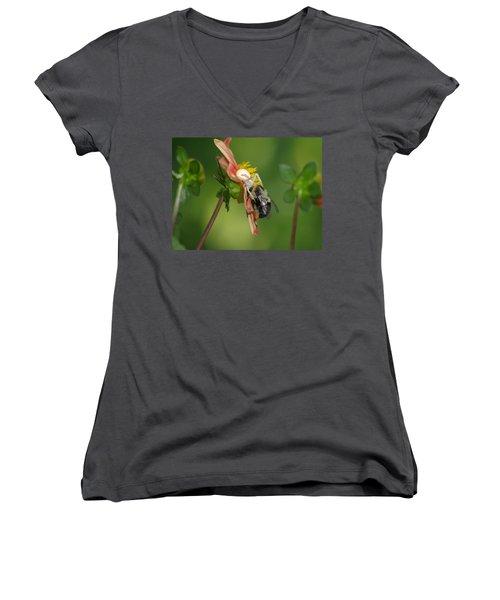 Goldenrod Spider Women's V-Neck T-Shirt (Junior Cut) by James Peterson