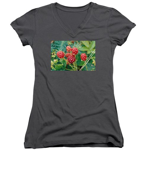 Highbush Blackberry Rubus Allegheniensis Grows Wild In Old Fields And At Roadsides Women's V-Neck T-Shirt (Junior Cut) by Anonymous