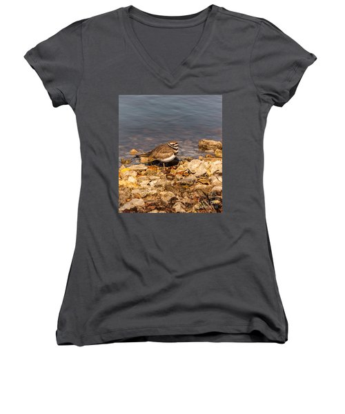 Kildeer On The Rocks Women's V-Neck T-Shirt (Junior Cut) by Robert Frederick