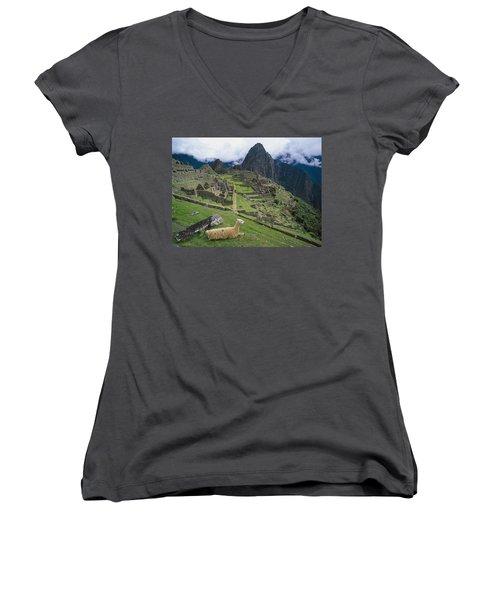 Llama At Machu Picchus Ancient Ruins Women's V-Neck T-Shirt (Junior Cut) by Chris Caldicott