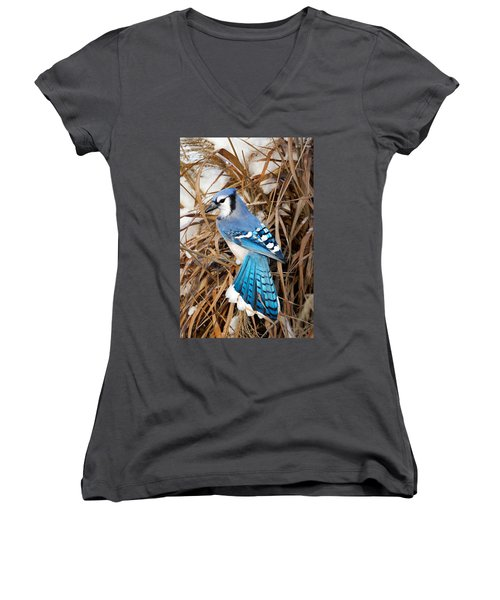 Portrait Of A Blue Jay Women's V-Neck T-Shirt (Junior Cut) by Bill Wakeley