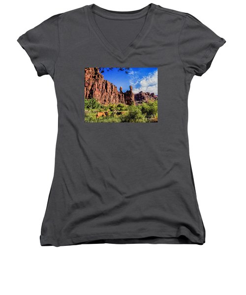 Private Home Canyon Dechelly Women's V-Neck T-Shirt (Junior Cut) by Bob and Nadine Johnston