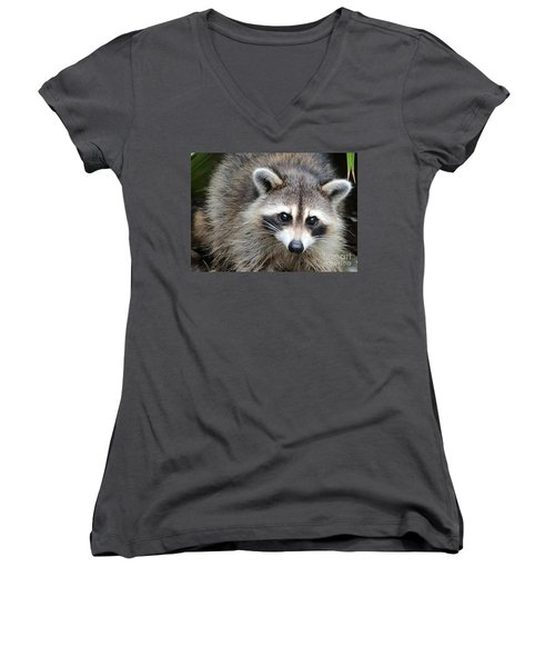 Raccoon Eyes Women's V-Neck T-Shirt (Junior Cut) by Carol Groenen