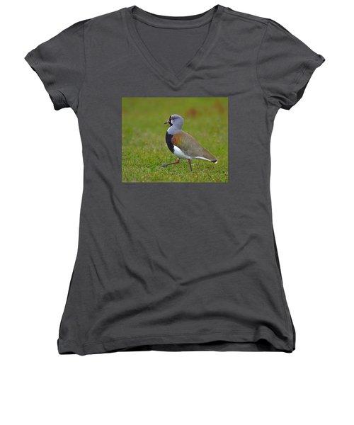 Strutting Lapwing Women's V-Neck T-Shirt (Junior Cut) by Tony Beck