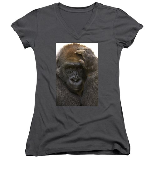 Western Lowland Gorilla With Hand Women's V-Neck T-Shirt (Junior Cut) by San Diego Zoo