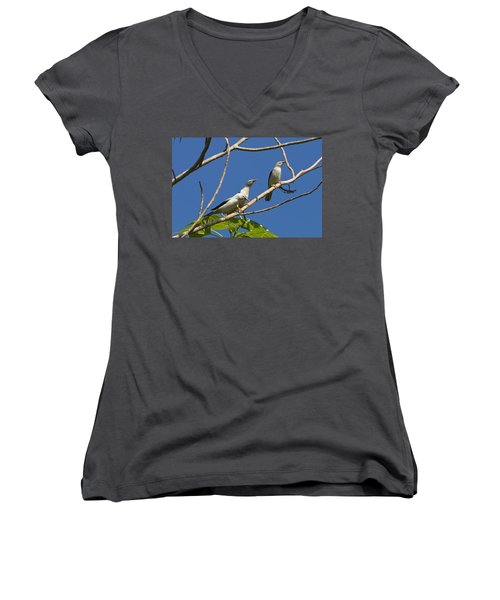 White-headed Starlings Havelock Isl Women's V-Neck T-Shirt (Junior Cut) by Konrad Wothe