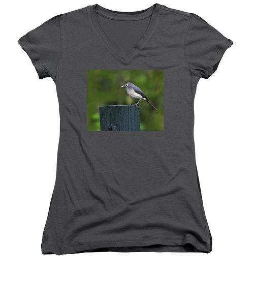 White-eyed Slaty Flycatcher Women's V-Neck T-Shirt (Junior Cut) by Tony Beck