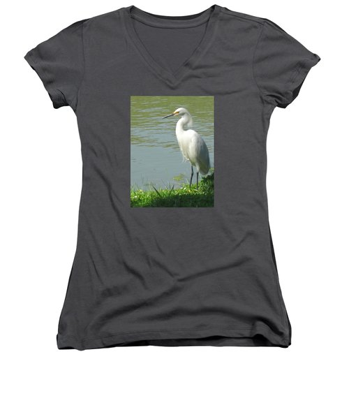 Bird Women's V-Neck T-Shirt (Junior Cut) by Sandy Taylor
