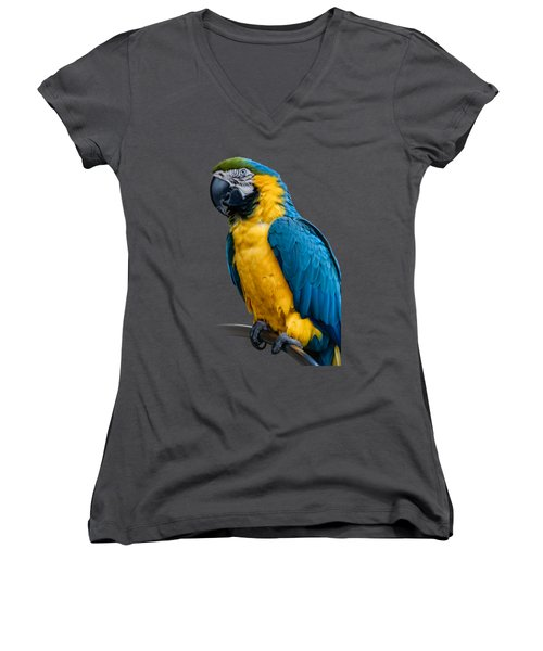 Blue Yellow Macaw No.1 Women's V-Neck T-Shirt (Junior Cut) by Mark Myhaver