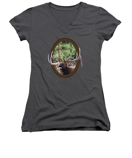 Colorado Bull Elk Women's V-Neck T-Shirt (Junior Cut) by Shane Bechler