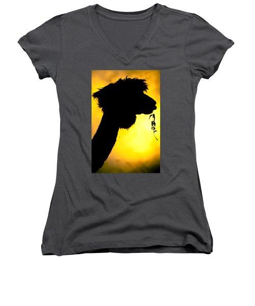 Endless Alpaca Women's V-Neck T-Shirt (Junior Cut) by TC Morgan