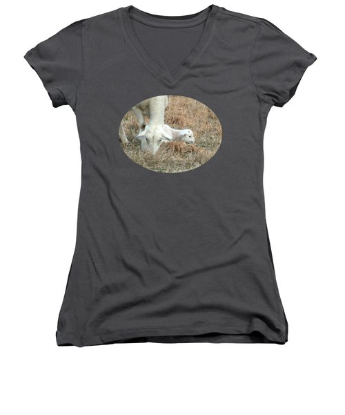 L Is For Lamb Women's V-Neck T-Shirt (Junior Cut) by Anita Faye
