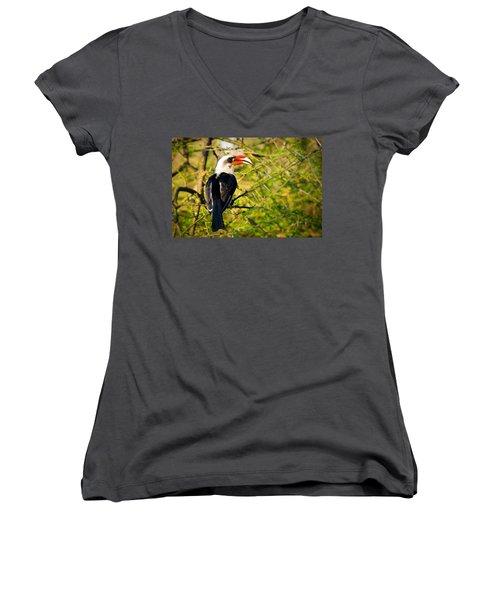 Male Von Der Decken's Hornbill Women's V-Neck T-Shirt (Junior Cut) by Adam Romanowicz