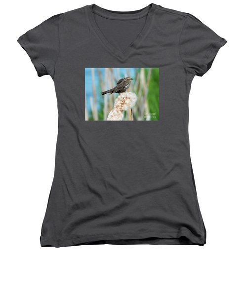 Ruffled Feathers Women's V-Neck T-Shirt (Junior Cut) by Mike Dawson