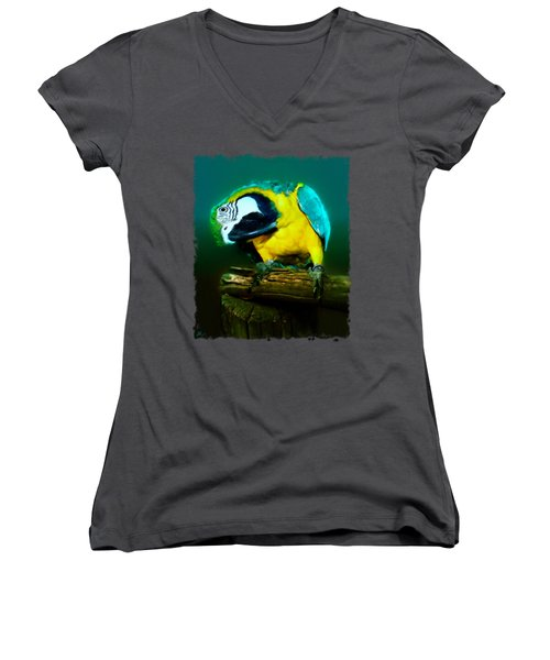 Silly Maya The Macaw Parrot Women's V-Neck T-Shirt (Junior Cut) by Linda Koelbel