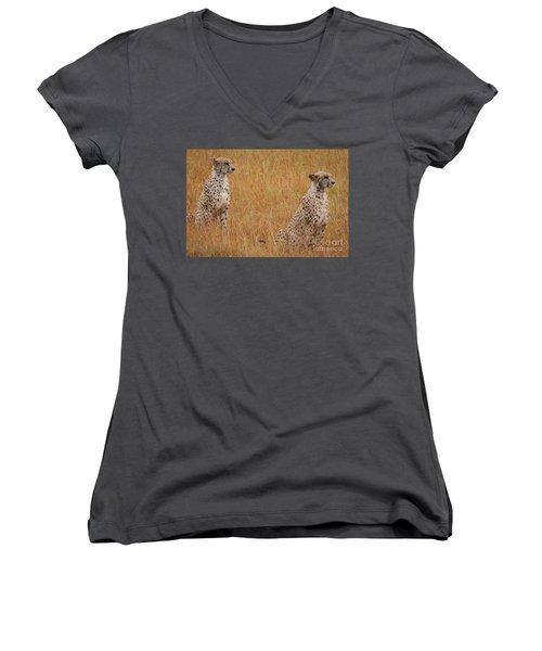 The Cheetahs Women's V-Neck T-Shirt (Junior Cut) by Stephen Smith