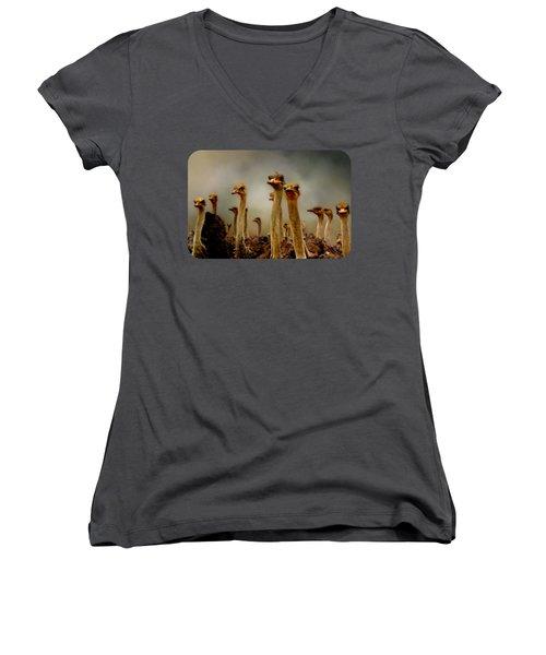 The Savannah Gang Women's V-Neck T-Shirt (Junior Cut) by Linda Koelbel