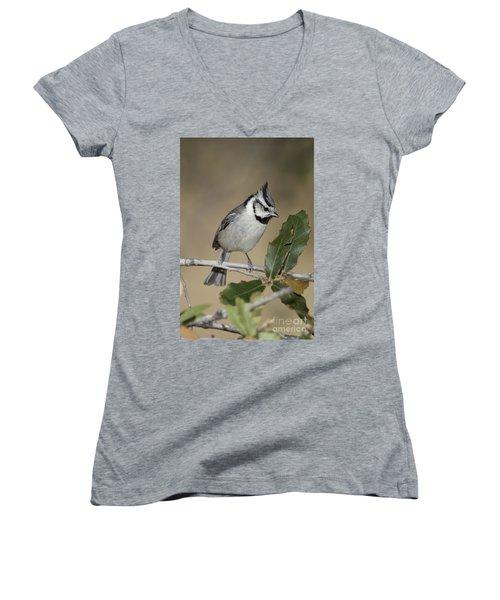 Bridled Titmouse Women's V-Neck T-Shirt (Junior Cut) by Anthony Mercieca