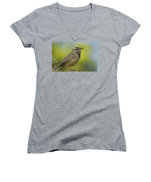Cactus Wren  Women's V-Neck T-Shirt (Junior Cut) by Saija  Lehtonen
