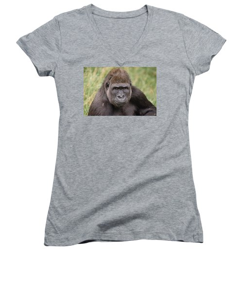Western Lowland Gorilla Young Male Women's V-Neck T-Shirt (Junior Cut) by Gerry Ellis