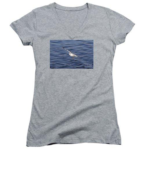 Flying Gull Women's V-Neck T-Shirt (Junior Cut) by Michal Boubin