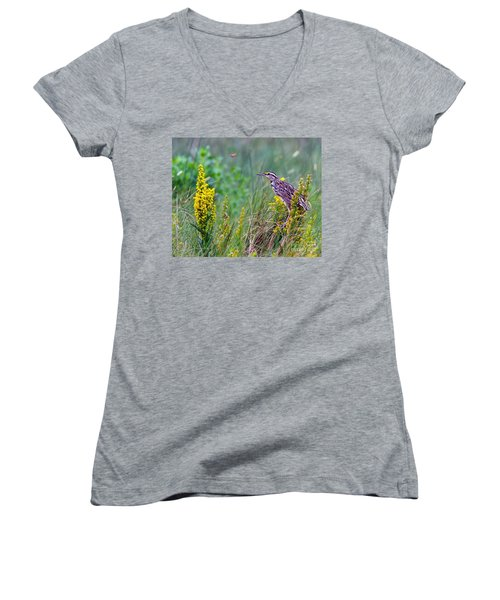 A Golden Opportunity Women's V-Neck T-Shirt (Junior Cut) by Gary Holmes