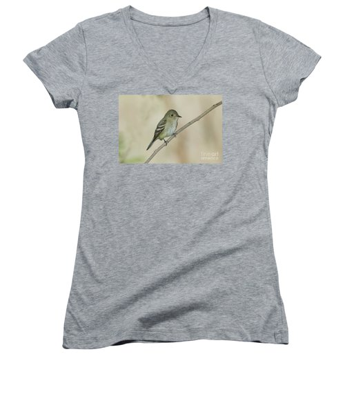 Acadian Flycatcher Women's V-Neck T-Shirt (Junior Cut) by Anthony Mercieca