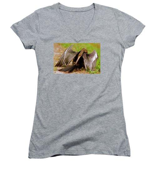 Anhinga Anhinga Anhinga Preening Women's V-Neck T-Shirt (Junior Cut) by Millard H. Sharp