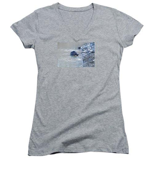 Beaver Chews On Stick Women's V-Neck T-Shirt (Junior Cut) by Chris Flees