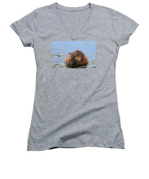 Beaver Portrait Women's V-Neck T-Shirt (Junior Cut) by Dan Sproul