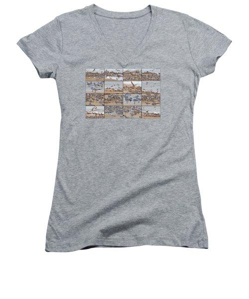 Birds Of Many Feathers Women's V-Neck T-Shirt (Junior Cut) by Betsy Knapp