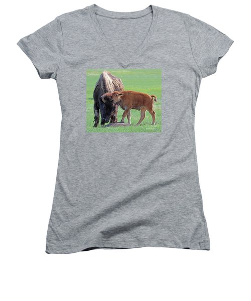 Women's V-Neck T-Shirt (Junior Cut) featuring the photograph Bison With Young Calf by Bill Gabbert